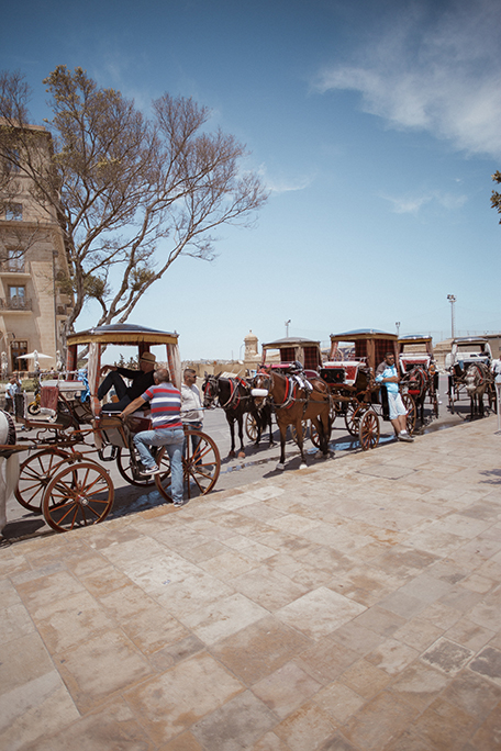 Horse carriage in Valetta, Malta